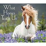 What Horses Teach Us 2017 Daily Box Calendar