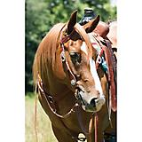 Weaver Filigree Sliding Ear Headstall