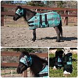 Kensington Mini Horse Fly Protection Package