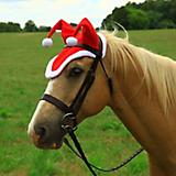 Shires Horse Holiday Hat