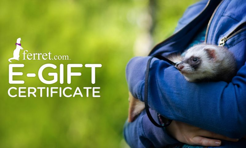 ferret.com gift certificates $200 giftcertificate on lovemypets.com