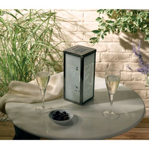 Frosted Solar Dragonfly Lantern Single Pack