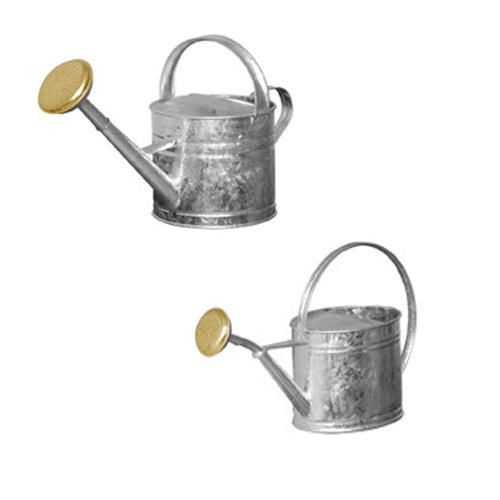 Galvanized Watering Can Silver 1 Gallon