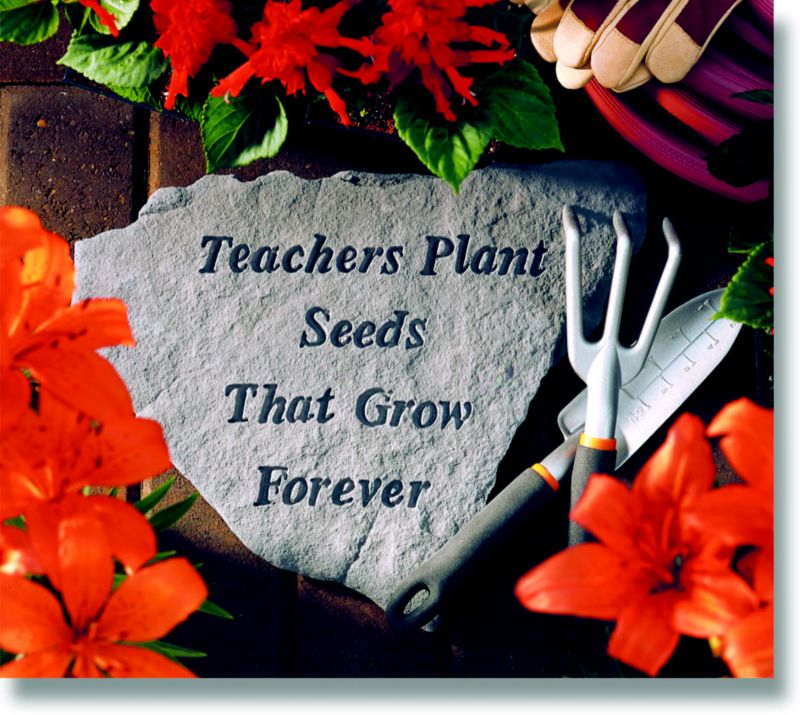 Stepping Stone- Teachers plant the seeds