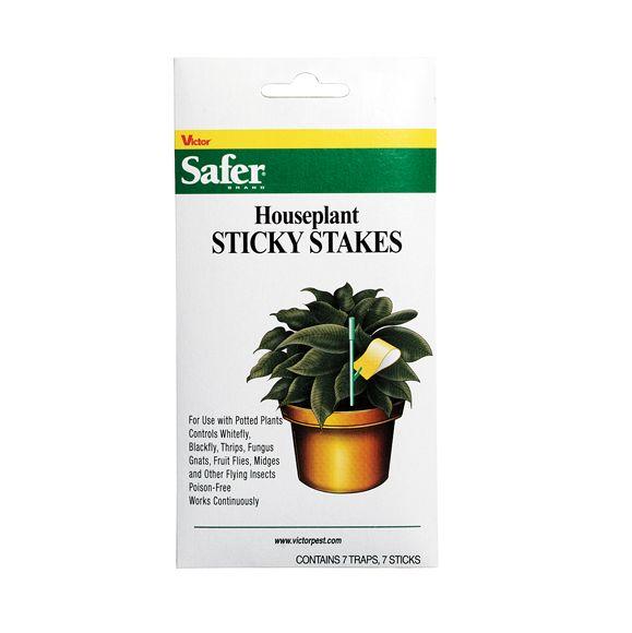 Safer Houseplant Sticky Stakes