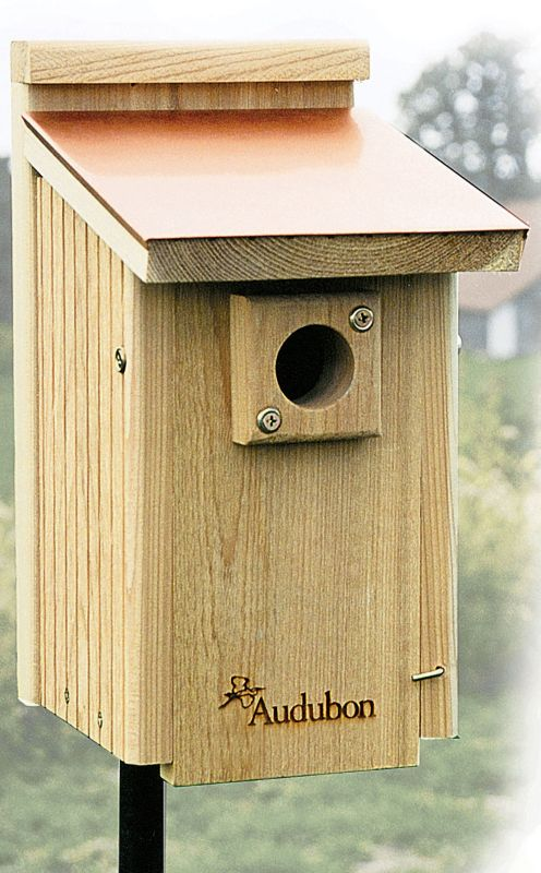 Audubon Copper Top & Cedar Bluebird House