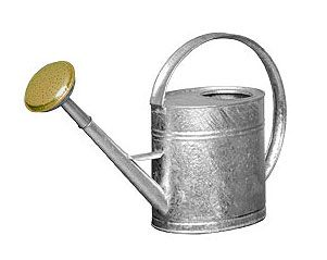 Galvanized Tall Watering Can 1 Gallon