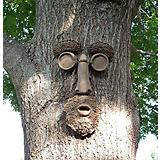 Genuine Tree Peeple Shademaster Tree Face