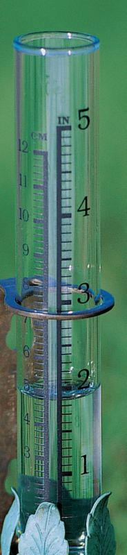 Conant Custom Brass Vermont Leaf Rain Gauge Tube