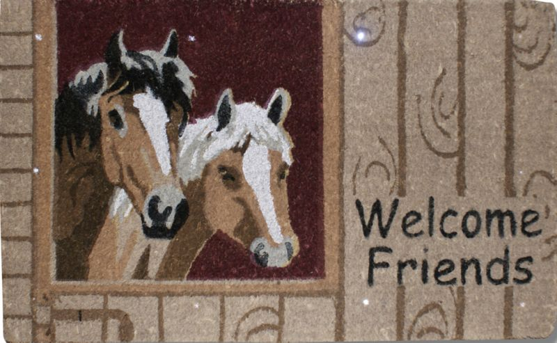 Farm Friends Welcome Magic Mat