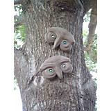 Genuine Tree Peeple Mr and Mrs Who Tree Face