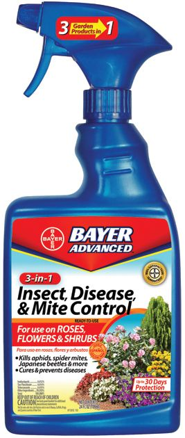 Bayer 3 In 1 Control Quart Concentrate