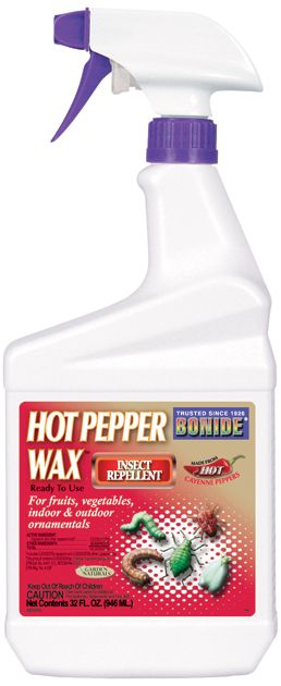 Insect Hot Pepper Wax Quart RTU