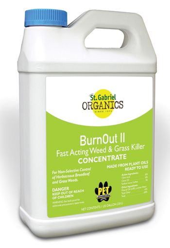 Burnout Gal Concentrate Gallon Concentrate