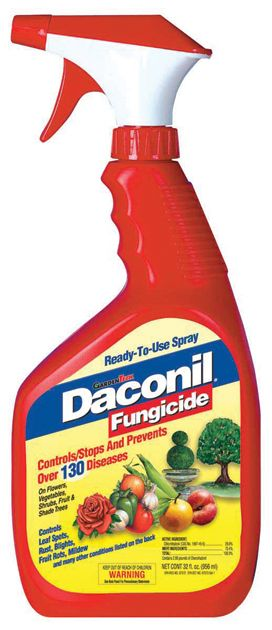 Daconil Fungicide Pint Concentrate
