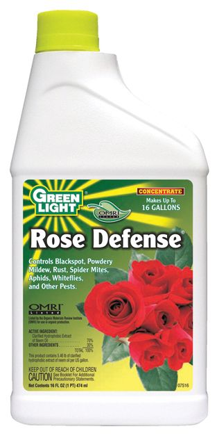 Green Light Rose Defense Pt