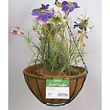 Green Wire Hanging Basket W Chain+Coco Liner