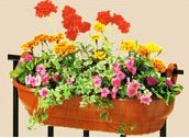 Self Watering Wall Basket 27In Green