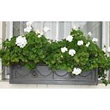 Adam Fiberglass Window Box