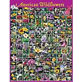 American Wildflowers Puzzle