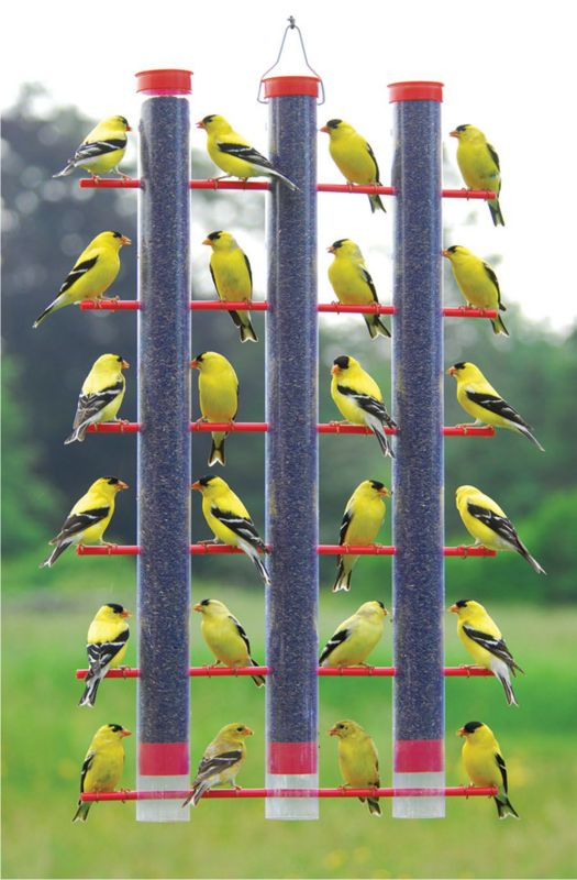 Finches Favorite 3 Tube Feeder Plastic (SE324 645194003248 Wild Bird Supplies Bird Feeders) photo