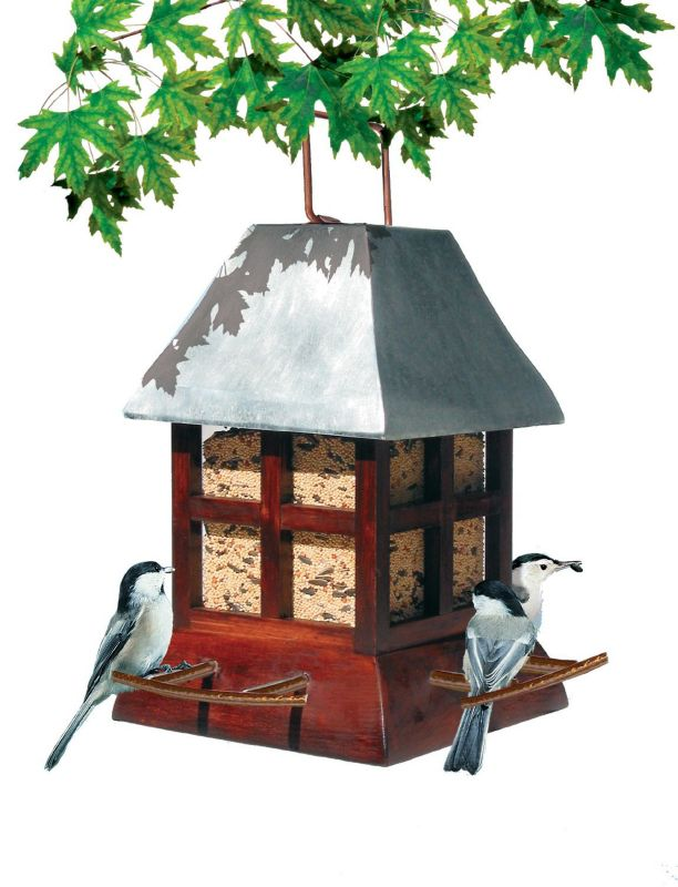 Paul Revere Feeder (PP50173 10717816501733 Wild Bird Supplies Bird Feeders) photo
