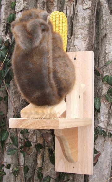 See-Saw Squirrel  Feeder