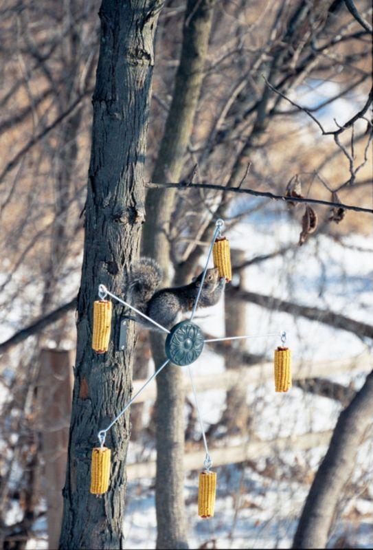 Squirrel Go-Round (HF75560 047977000596 Wild Bird Supplies Bird Feeders) photo