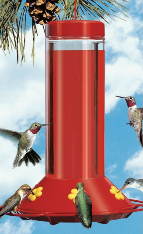 The Ultimate Hummingbird Feeder