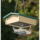 Upside Down Suet Feeder-Driftwood