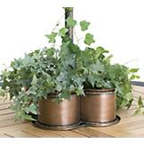 Brass Rope Umbrella Planter