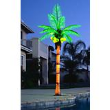 Coconut Lighted Palm Tree