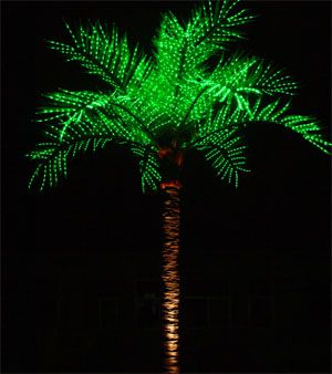 LED Lighted Palm Tree 16ft Tall
