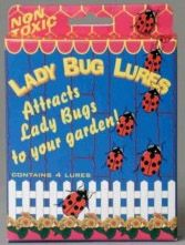 Lady Bug Lures