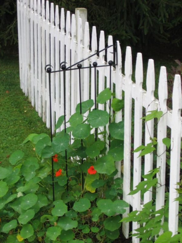 Cascade Gardens Adjustable Trellis