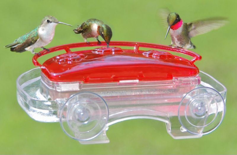 Jewel Box Window Hummingbird Feeder (ASPECTS407 026451124072 Wild Bird Supplies Bird Feeders) photo