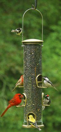 Quick Clean Big Tube Antique Brass (ASPECTS420 026451124201 Wild Bird Supplies Bird Feeders) photo