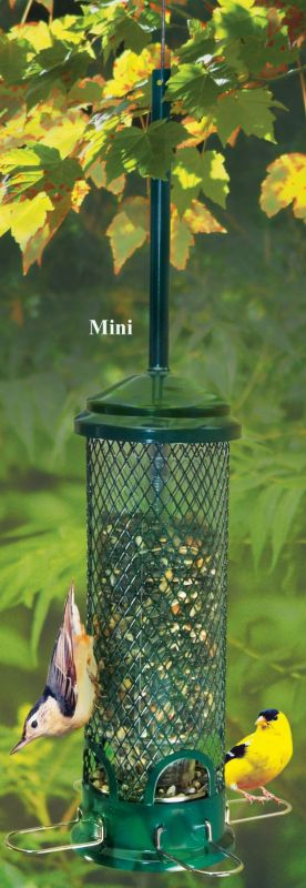 Squirrel Buster Finch Feeder Best Price