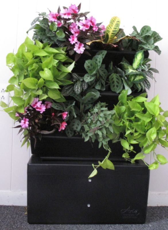 Aria EcoScape Vertical Garden Double Beauty