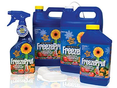 Freeze Pruf Qt Concentrate