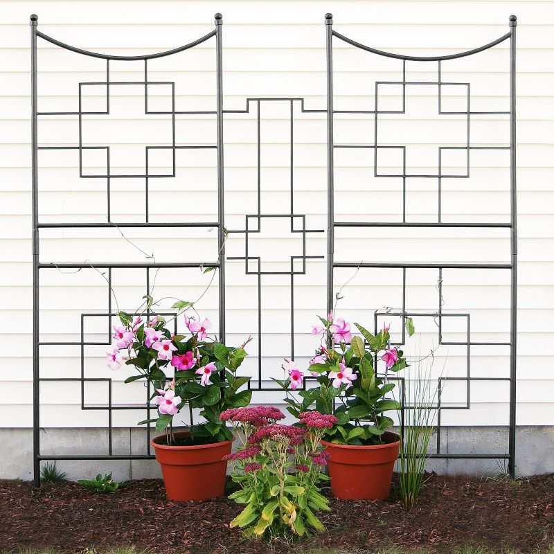 Square-on-Squares Trellis Link Only