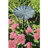 Lily Leaf Birdbath