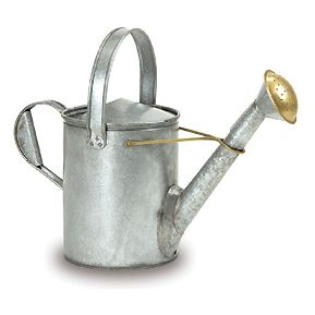 Galvanized Short Necked Watering Can Steel Brass