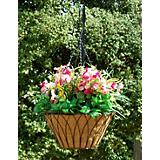 Nelumbo Hanging Planter