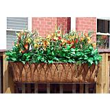 Nelumbo Window Box Planter