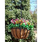 Newport Hanging Planter