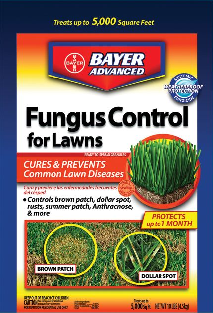 Bayer Advanced Fungus Control for Lawns 24 oz