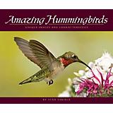 Amazing Hummingbirds