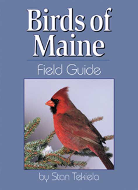 Birds Maine Field Guide