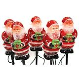 Outdoor Decor Santa Crystallized with Gift